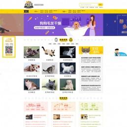 帝国cms仿小可爱宠物网完整源码,专业宠物资讯平台源码下载