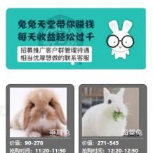 华登区块狗源码 华登区块链兔兔天堂系统源码下载