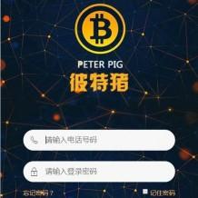 2020运营版华登彼特猪区块系统源码|猪猪传说区块链源码
