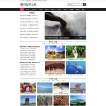 织梦模板:dede新闻资讯个人自媒体美文博客网站源码下载 带手机端